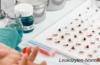 Leukozyten-Normalwert